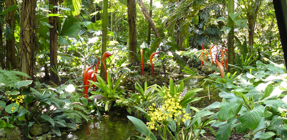 World 39 s botanic gardens contain a third of all known plant species and help protect the most for Fairchild tropical botanic garden