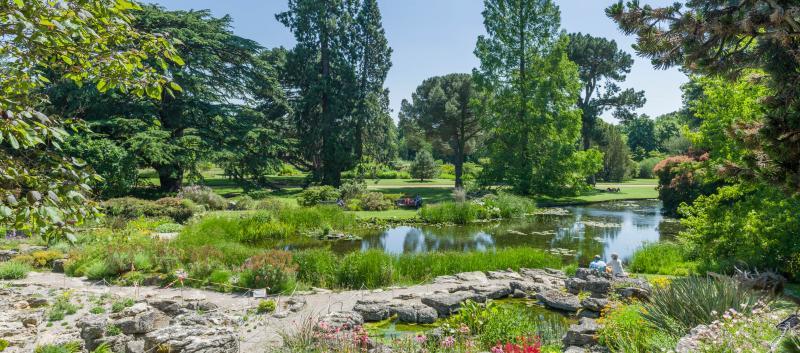Heritage landscape at the Botanic Garden. (Image © Howard Rice)