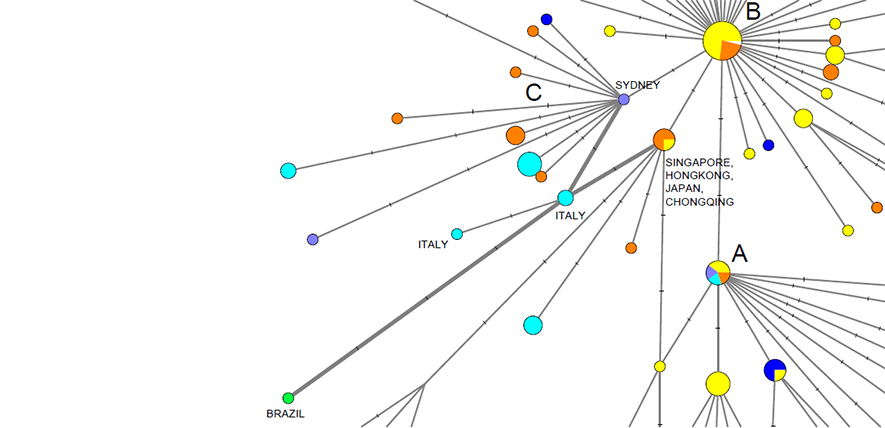 https://www.cam.ac.uk/research/news/covid-19-genetic-network-analysis-provides-snapshot-of-pandemic-origins