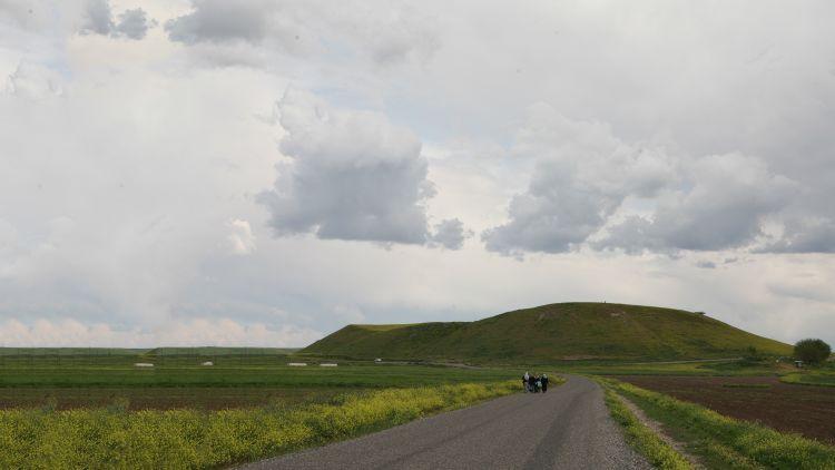 Citadel mound