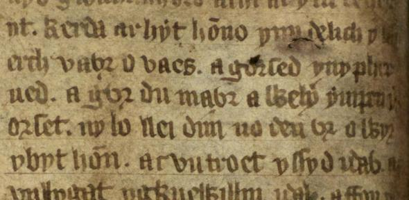 Early example of the Welsh word for not (dim, line 5) in the 14th-century Mabinogion