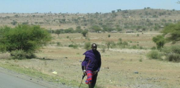 Masai bush landscape