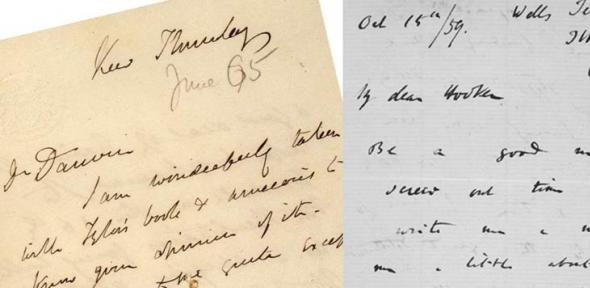 Letters exchanged by Darwin with his close friend Joseph Hooker, Director of the Royal Botanic Gardens, Kew; the letter from Darwin was written shortly after the completion of On the Origin of Species in 1859