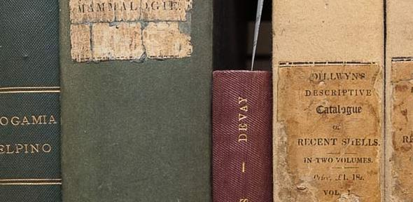 Books from Darwin's personal library