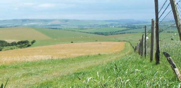 A path on the South Downs Way in Sussex