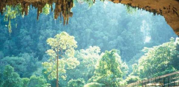 Niah-Cave, Borneo