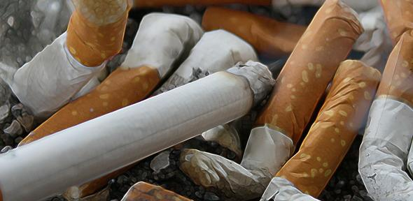 Close-up of cigarettes