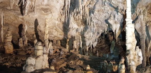 Speleothems in the Corchia Cave, Central Italy