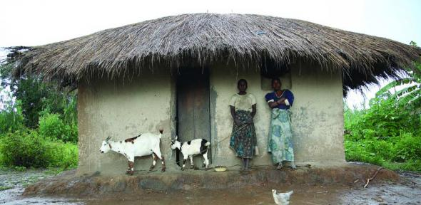 Household takes refuge from the rain in central Malawi