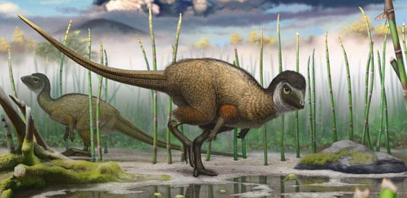 new study shakes the roots of the dinosaur family tree university