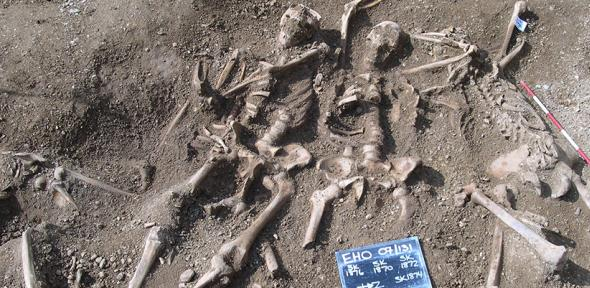 Massacred 10th century Vikings found in a mass grave at St John's College, Oxford
