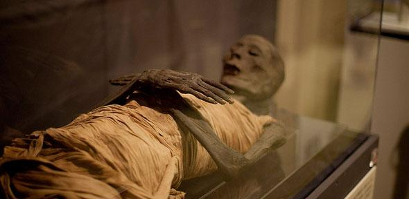 first complete genome data extracted from ancient egyptian mummies