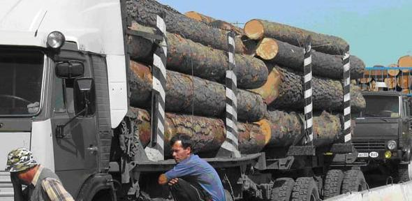 Siberian timber being delivered to China