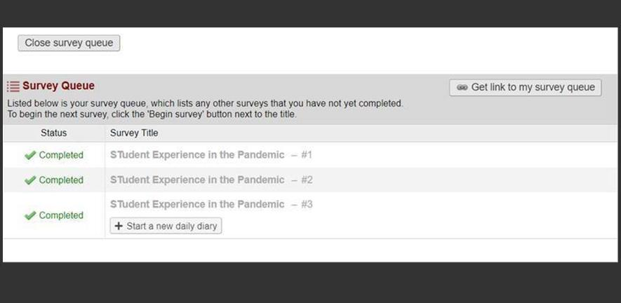 Screengrab of the survey system