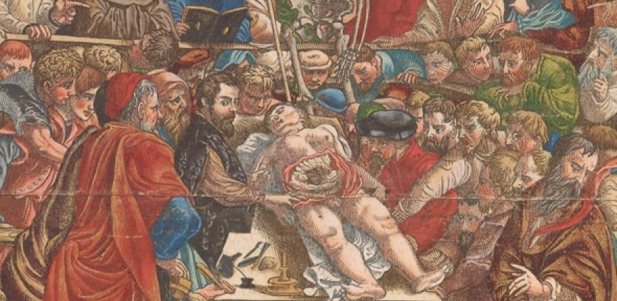 Andreas Vesalius (1514-1564) and the books that made the