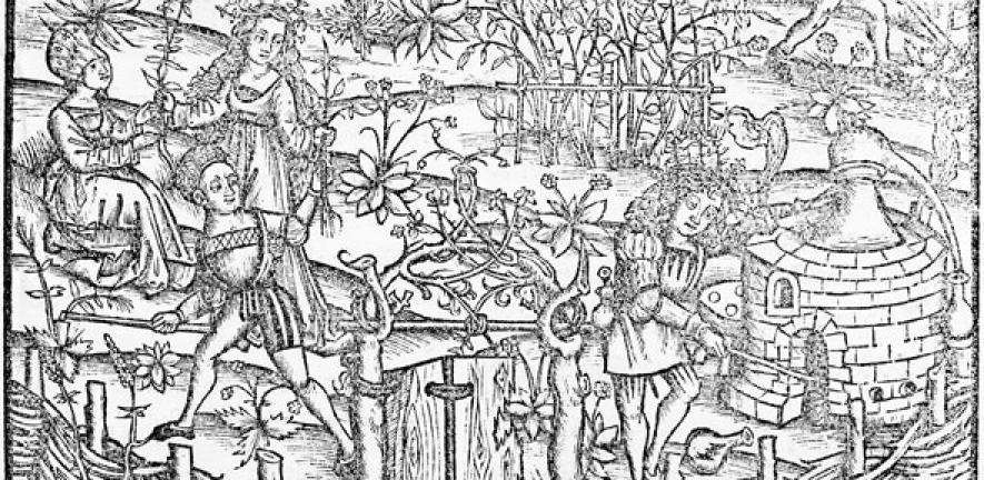 Distillation in the 15th century, from Liber de Arte Distillandi de Compositis by Hieronymus Brunschwig