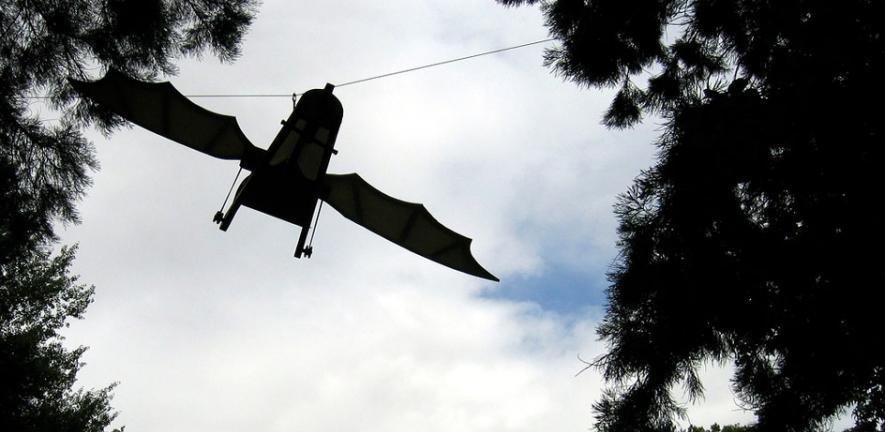 Leonardo's Flying Machine
