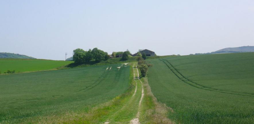 Green and pleasant land: A farm near East Meon in Hampshire.