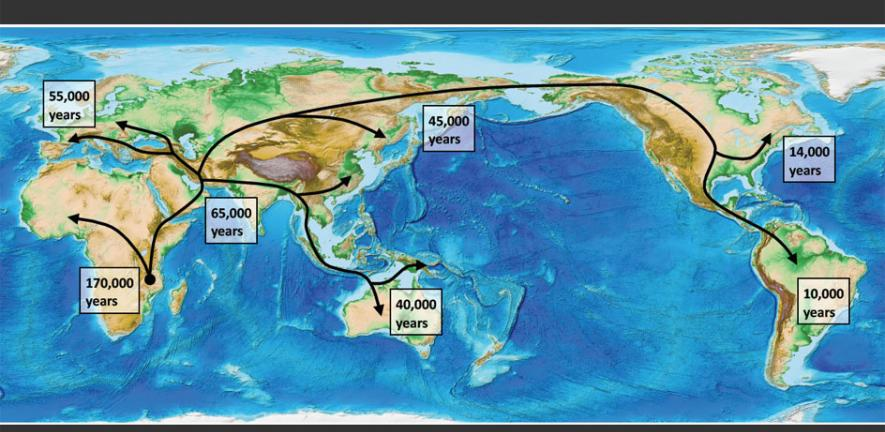 Scientists Use Genetics And Climate Reconstructions To Track The