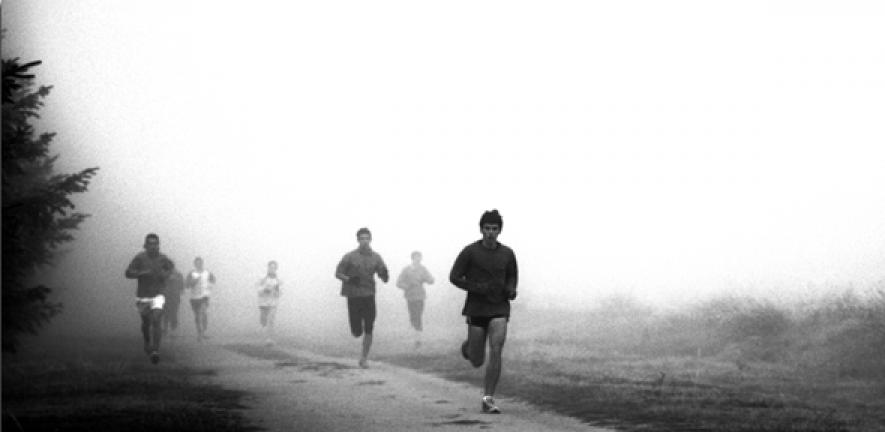 Distance running may be an evolutionary 'signal' for
