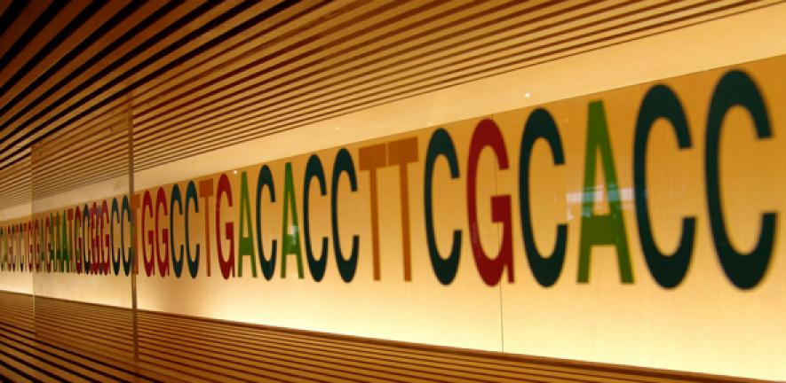 Family History And Location Of Genetic Fault Affect Risk For Carriers Of Key Breast And Ovarian Cancer Genes University Of Cambridge