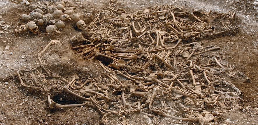 A mass grave of around 50 headless Vikings from a site in Dorset, UK. Some of these remains were used for DNA analysis.