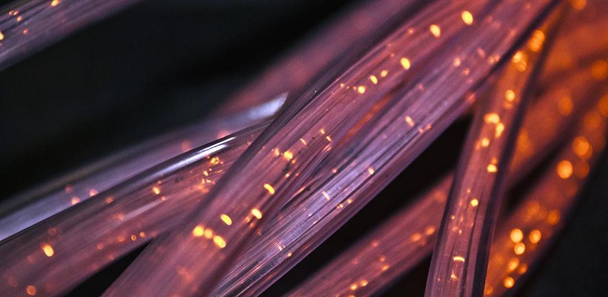 Network of fibres