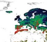 Initial ISI-MIP simulation showing the effects on vegetation productivity at the highest emissions scenario (reduction: red to yellow; increase: green to blue)