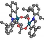 A palladium catalyst in action