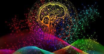 Colourful illustration of human brain