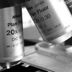 Nikon Microscope
