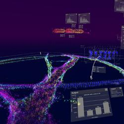 DBScan analysis being performed a mature neuron in a typical vLUME workspace.