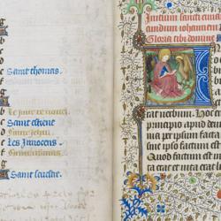 Manuscript N.24