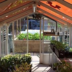 Greenhouse with tinted solar panels