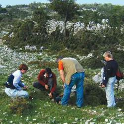 Plant collecting in Kephalonia