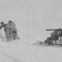 Foundering in soft snow: Bowers' sledge team; Wilson pushing; Oates and PO Evans repairing, Beardmore Glacier, 13 December 1911
