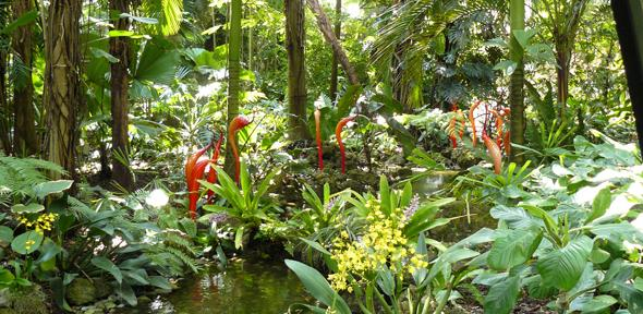 World's botanic gardens contain a third of all known plant species